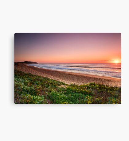 Narrabeen Beach, Sydney Australia. Canvas Print