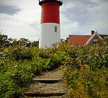 Lighthouse at the Cape by Karol Livote