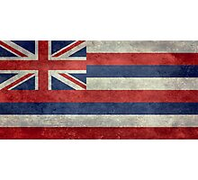 State Flag of Hawaii,  retro style vintage 1-2 scale version Photographic Print