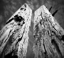 Erosion of Memory. by Ben Loveday