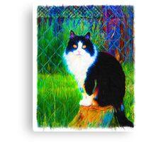 Tuxedo Butler Canvas Print