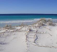 Friendly Beaches, Freycinet Peninsular by Wendy Dyer