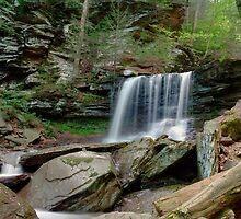 Summer Flow Over B. Reynolds Falls by Gene Walls