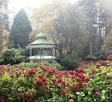 Cataract Gorge Grounds, Launceston by Wendy Dyer