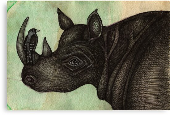 Rhino & Bird by Lynnette Shelley