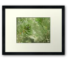 Christmas Weed  Framed Print