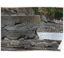 naturalized seawall Poster