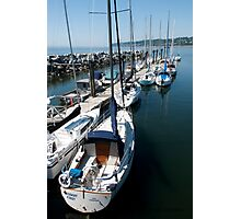 Sailboats at the Pier Photographic Print