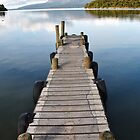 Tranquility - Lake Tarawera by mattslinn