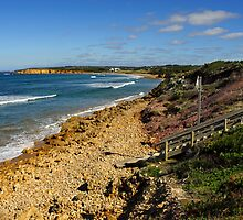 Point Danger at Torquay by Darren Stones