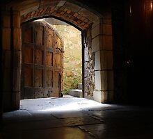 Oaken Portal by Hugh Coleman