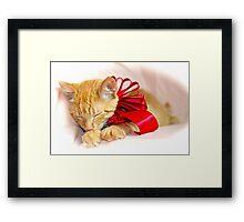 Sleepy Kitty Framed Print