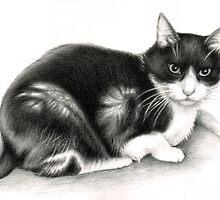 Cat Filou by Nicole Zeug