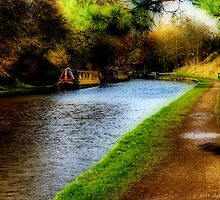 Audlem Canal - Ortonised View by David J Knight