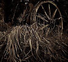 Two Wheels by SunDwn