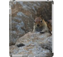 Chipmunk Playing Hide And Seek iPad Case/Skin
