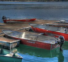 Boats on Redfish Lake by Susan Littlefield