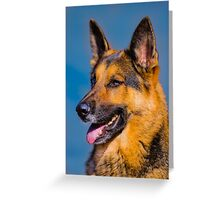 Focus and Attention..... Greeting Card