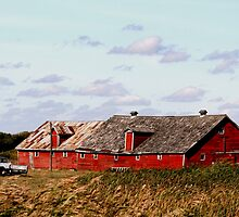 Extended Two Cupola Barn by Larry Trupp