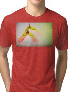 Beginnings Tri-blend T-Shirt