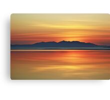 Bronze Shore Canvas Print