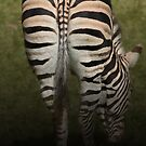 Grazing Stripes by Mark Hughes