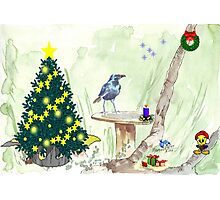 The Starling and Christmas in Africa Photographic Print