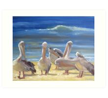 Grooming time - pelicans in the sun Art Print
