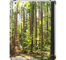 Summer Trails iPad Case/Skin