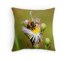 Caution, Bee at work! Throw Pillow