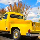 F-100 Ford Pick-Up by chuckbruton