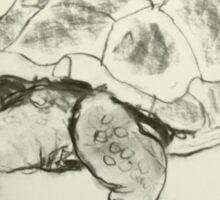 goliath the giant land tortoise Sticker