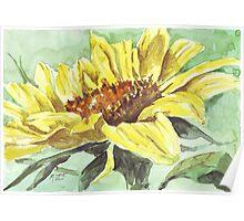 Symbol of Adoration - Sunflower Poster