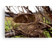 An Abandoned Nest Canvas Print