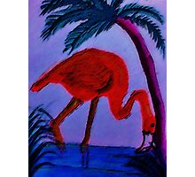 Flamingo under the palm tree,  watercolor Photographic Print