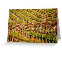 Rolling Vineyard Greeting Card