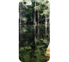 Florida Beauty 4 iPhone Case/Skin