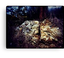 Splitrock Canvas Print