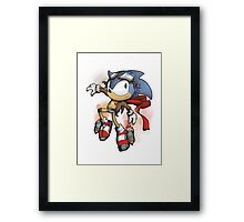 Steam the HedgeHog Framed Print
