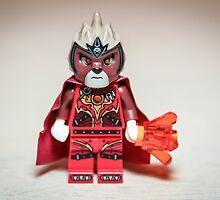 Chima on Fire by garykaz