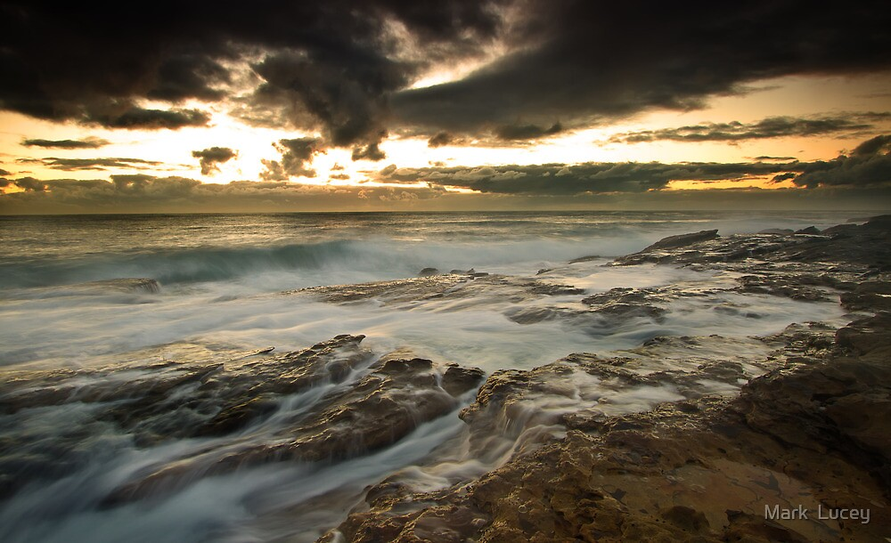 Bright Motion by Mark  Lucey