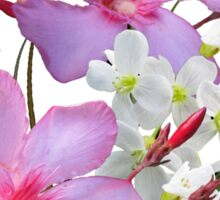 Flowers pink and white Sticker
