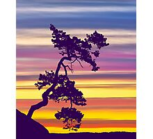 One Tree Hill Sunrise Photographic Print
