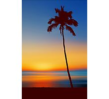 Palm Tree Beach Sunset Photographic Print