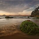 Umina at Lowtide by Andrew Murrell