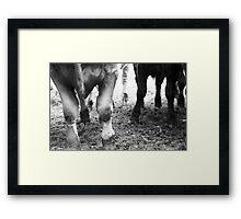 The Hoof Framed Print