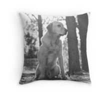 Afternoon Sunlight Throw Pillow