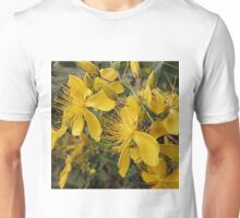 Hypericum flowers on a shrub Unisex T-Shirt