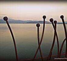 The Ioannina lake railings by fruitcake