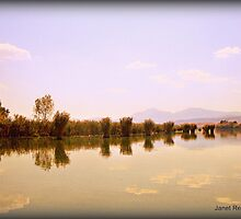 Ioannina lake,  Bull rushes, Greece by fruitcake